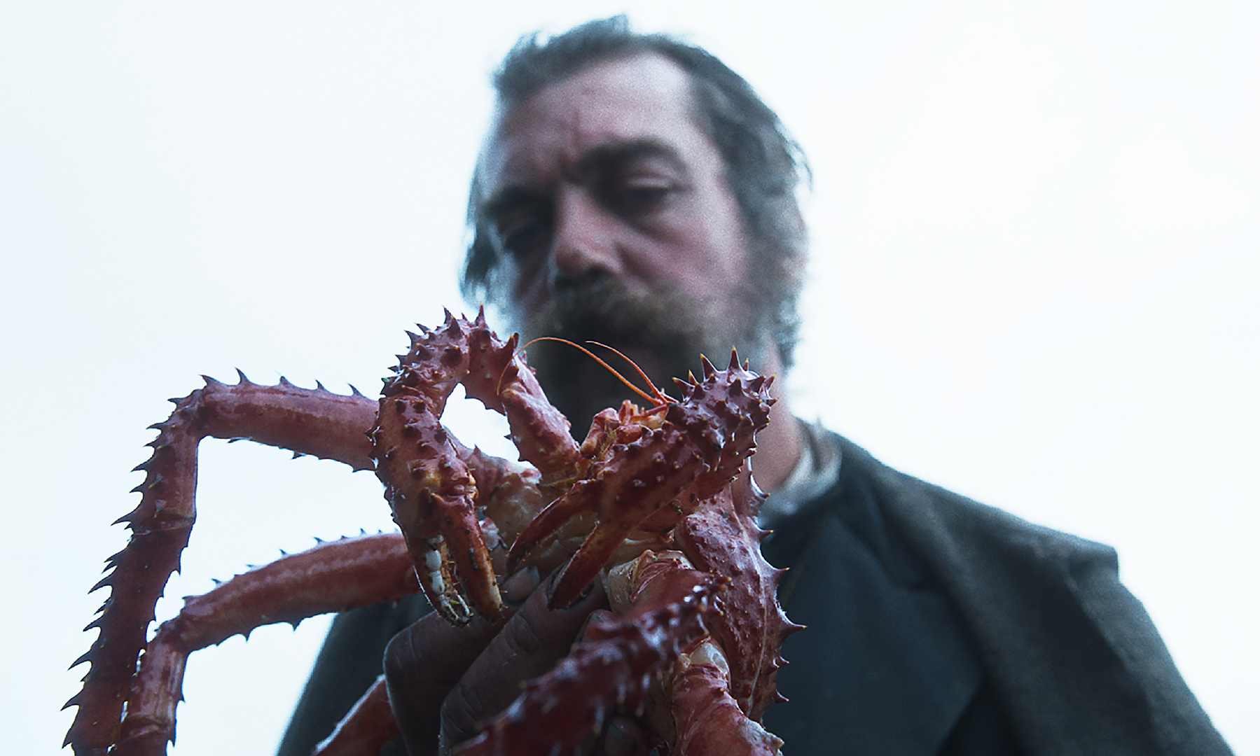The Tale of King Crab (Alessio Rigo de Righi and Matteo Zoppis)